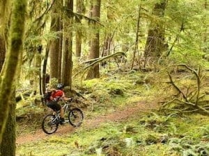 Mountain Bike Transfers